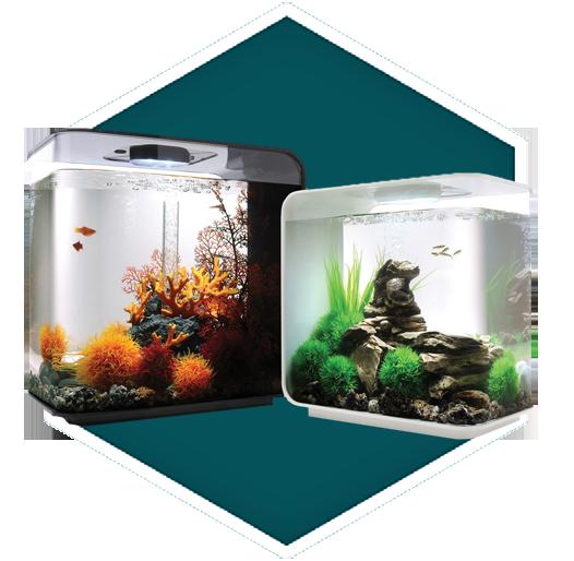 Biorb Lifestyle Aquariums Biorb Water Garden Uk